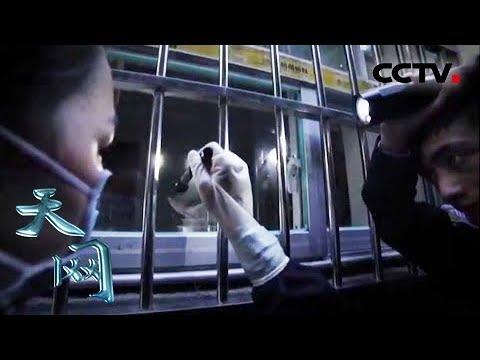 《天网》黑夜潜入者:夜黑风高 别墅区惊现入室大盗   CCTV社会与法