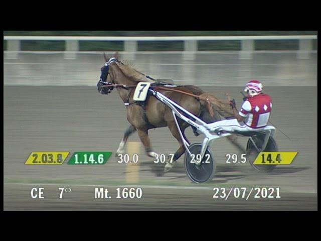 2021 07 23 | Corsa 7 | Metri 1660 | Premio Alpha 3