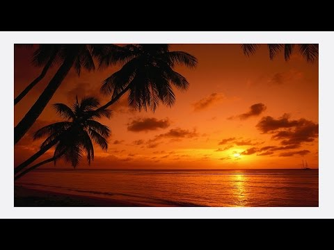 Calypso Instrumental Music - Trinidad and Tobago