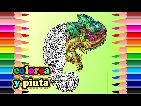 Camaleón Mandala Para Colorear - Mandala Chameleon To Paint - YouTube
