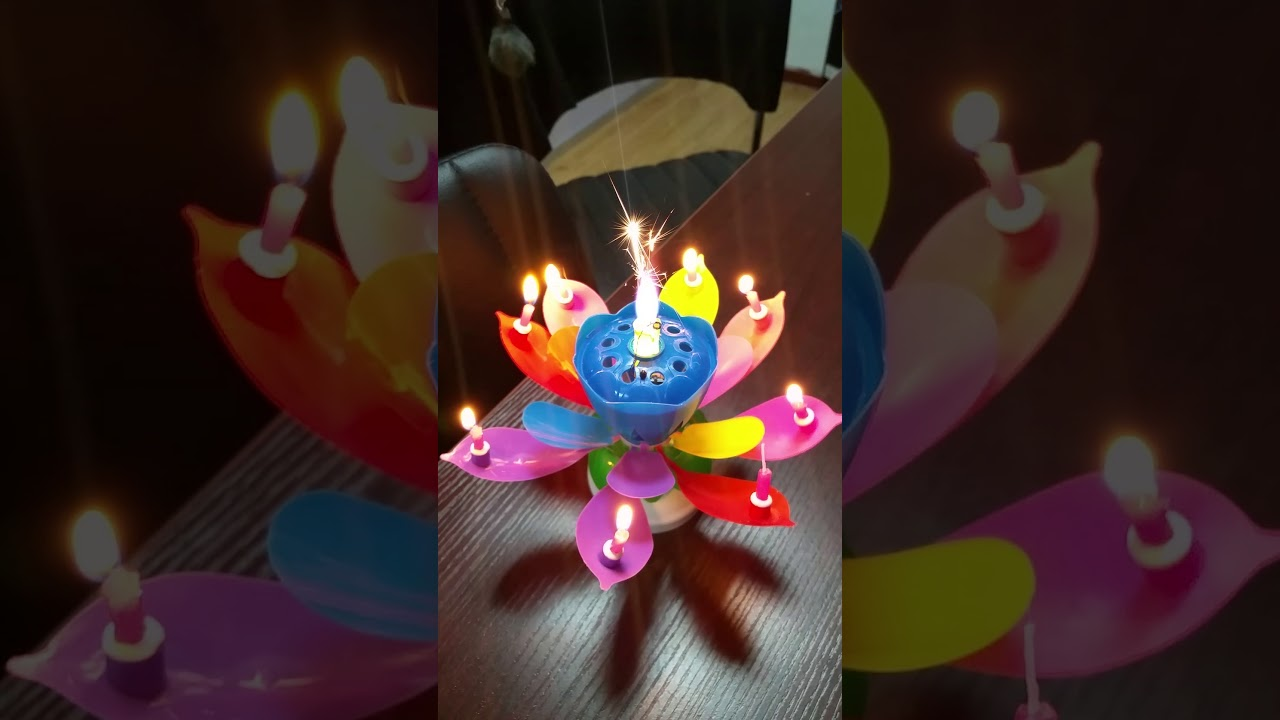 Amazing rainbow lotus flower birthday candle for party youtube amazing rainbow lotus flower birthday candle for party izmirmasajfo