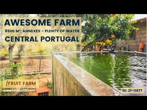 Organic Farm annexes, water, electricity, 8500 m²/ Central Portugal, Lardosa, Castelo Branco/€65.000