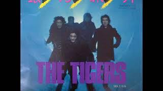 ザ・タイガースThe Tigers/⑱銀河旅行(1983年3月1日発売) 作詞:湯川...