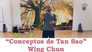 "Aprende WING CHUN en ESPAÑOL ""Tan Sao"" 🐊 4º🐊"