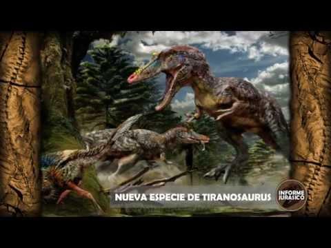 Nueva especie de Tiranosaurus | Informe Jurasico