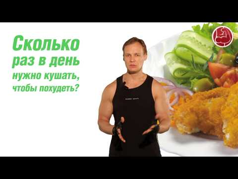 Сколько раз в день нужно кушать чтобы похудеть?