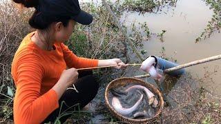 Única trampa para peces con tecnología primitiva captura tantos peces grandes