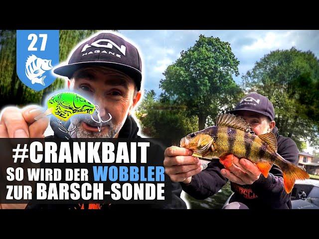 SOMMER-BARSCHE: Powerfishing mit dem KUGELBLITZ