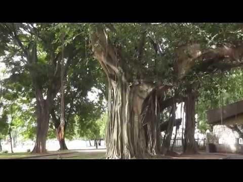 Sri Lanka 2015  Colombo gerechtsgebouw, het historisch museum en Cinnamon garden