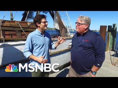 Revisiting Swing State Voters One Year After The Presidential Election | MSNBC