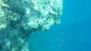 Gambar cover Снимаю под водой на Sony Xperia