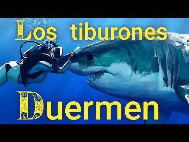 Los tiburones no pueden dejar de nadar por que si lo hacen mueren