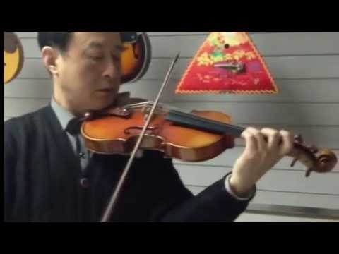 Aileen Music Violin Performance VH900Z