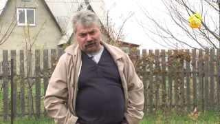 видео Органическое земледелие. Приручаем сорняки