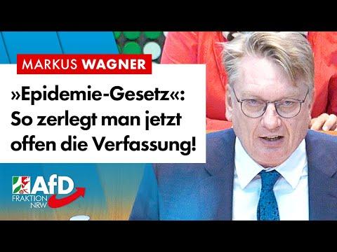 Epidemie-Gesetz: Hier Wird Offen Die Verfassung Demontiert! –  Markus Wagner (AfD)