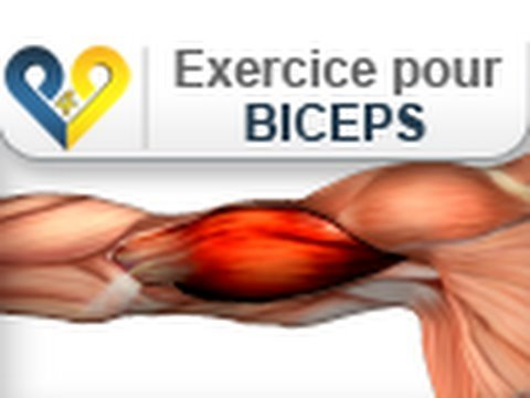 Musculation biceps  avant bras debout - YouTube 17622a1d9dd