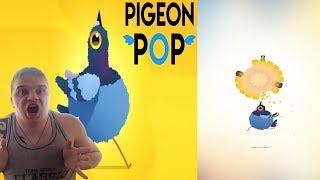 БЕЗУМИЯ С ГОЛУБЯМИ ► Pigeon Pop ►Обзор,Первый взгляд,Геймплей,Gameplay
