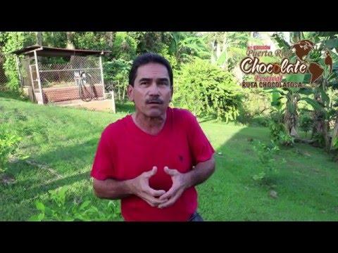 Entrevista Luis Rivera Añasco, PR ; Finca de Cacao Fino y de Aroma de Puerto Rico