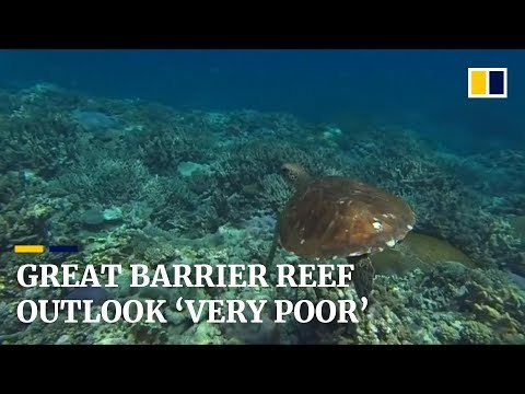 Australia's Great Barrier Reef outlook drops to 'very poor' amid climate change threat