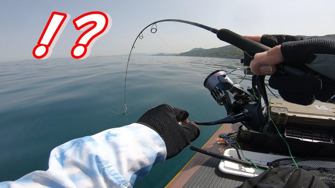 【フラットフィッシュ】浅場でするエキサイティングなこの釣りにハマりそう!!