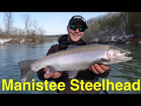 Manistee River Steelhead Fishing
