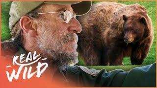 Wild Bear Breaks And Enters | The Bear Whisperer | Real Wild