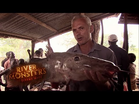 The Bizzarre Looking Catfish Of The Congo | CATFISH | River Monsters