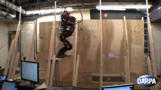 Engineering Newswire 12: Saving Lives with Robotic Bees