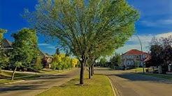 Scenic Acres Community Focus