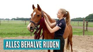 Wat kan je met je paard doen zonder te gaan rijden? Want het zal je...
