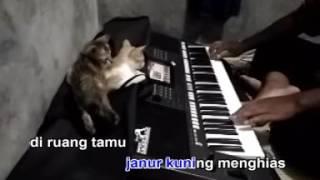 Pelaminan Kelabu Karaoke Yamaha PSR