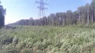 Горенка - Великий Новгород (Новгород-на-Волхове) из окна ДТ1 (вид направо)