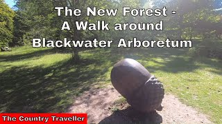 A 5 minute walk around Blackwater Arboretum in The New Forest
