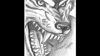 Как нарисовать волка(В этом видео можно увидеть рисунок волка, нарисованный на белом альбомном листе карандашом., 2014-10-23T14:53:25.000Z)