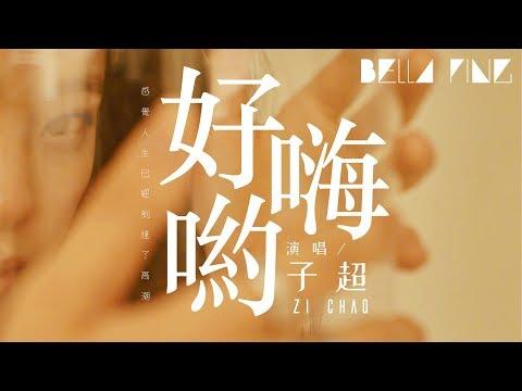 子超- 好嗨喲(抖音完整版)【歌詞字幕 完整高清音質】 「感覺人生 ...