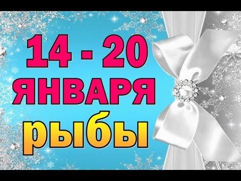 Таро прогноз (гороскоп) с 14 по 20 января – РЫБЫ