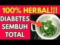 100% Herbal!!! Diabetes Sembuh Total Dengan Cara Tradisional Ini || YtNetral