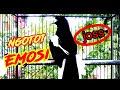 Pancingan Kacer Tarung Ngotot Di Jamin Joos Hobi Kita  Mp3 - Mp4 Download