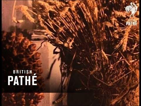 Harvest Festival (1967)