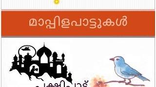 Pakshi Pattu | Mappilapattukrithikal പക്ഷിപ്പാട്ട് | മാപ്പിളപാട്ടുകൃതികള്