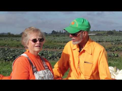 Fred Meyer -- Meet Our Northwest Growers: Mustard Seed Farms