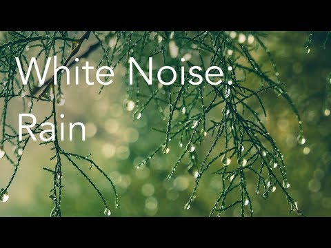 Rain Sounds For Relaxing Focus Or Deep Sleep Nature White Noise 8 Hour Video Youtube