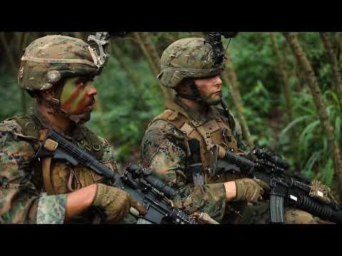 DFN:Ambush Field Exercise MARINE CORPS BASE HAWAII, HI, UNITED STATES 02.07.2019