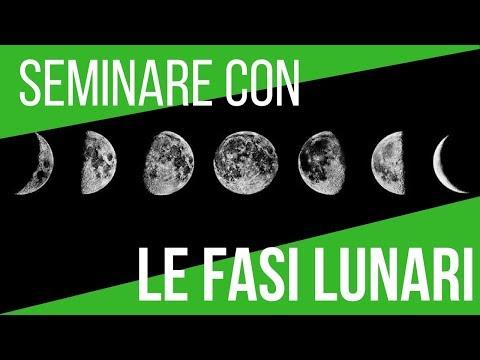 IL CALENDARIO LUNARE 2018 | SEMINA ORTAGGI E FASI LUNARI