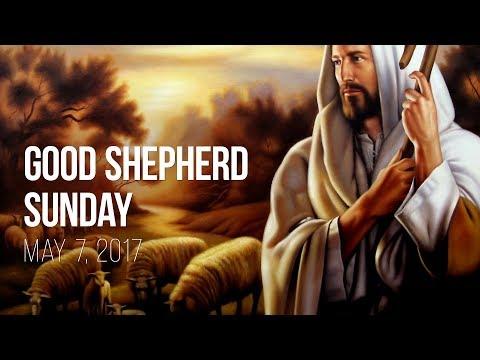 Weekend Reflection – May 7, 2017 (Good Shepherd Sunday)