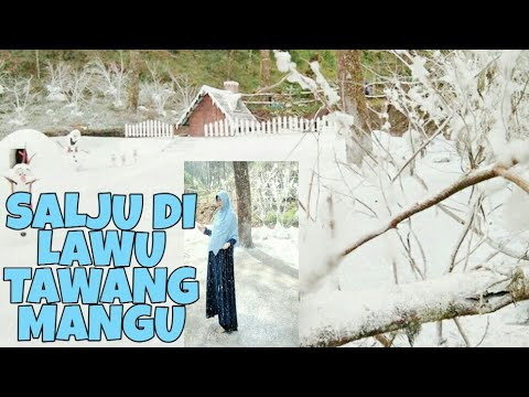 salju-the-lawu-park-tawangmangu-👻