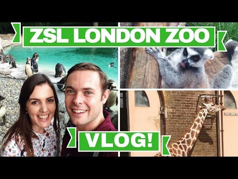 VLOG | A day out at ZSL London Zoo!