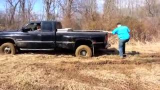 march 10, mudding on the farm
