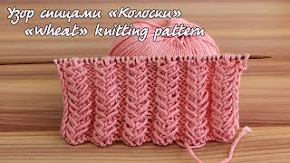 Узор спицами «Колоски» | «Wheat» knitting pattern