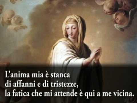 Preghiere - Preghiera a Maria santissima prima del riposo notturno